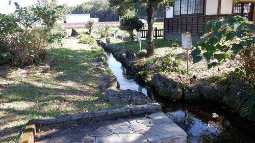 前川水源内で魚が泳ぐ小川