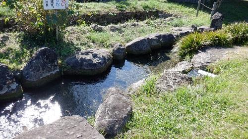 前川水源内を流れる小川