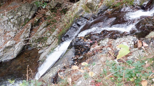 常光寺の滝から流れてくる川