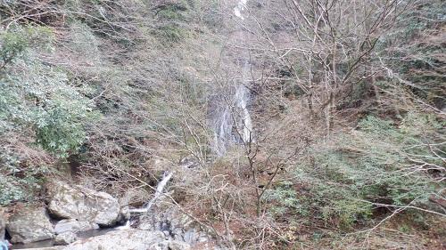茂みから見た常光寺の滝
