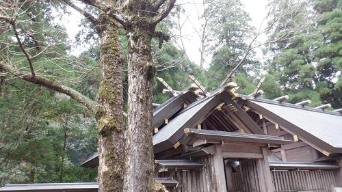 天岩戸神社拝殿の一部分