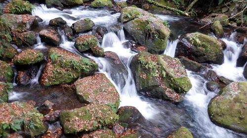 白糸の滝から流れる川