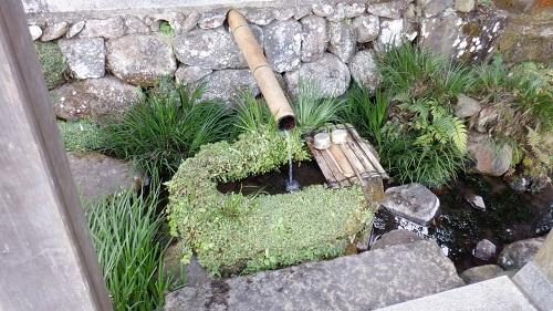 畑冷泉の流れる水