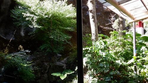 幸ヶ丘の中庭