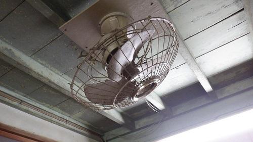 幸ヶ丘天井の扇風機