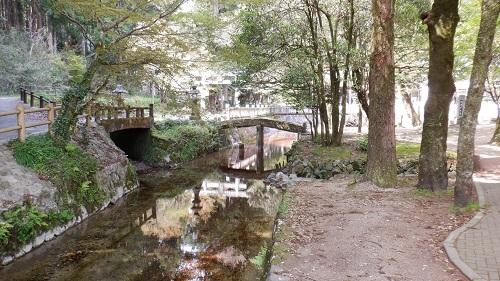 別府弁天池内のきれいな川